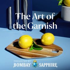 Up your garnish game with your Bombay G&T and master the art of hosting. #StirCreativity