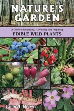 Nature's Garden: A Guide to Identifying, Harvesting, and Preparing Edible Wild Plants >>> Hurry! Check out this great item : Edible garden Organic Gardening, Gardening Tips, Gardening Books, Organic Plants, Gardening Vegetables, Flower Gardening, Exotic Plants, Gardening Supplies, Indoor Gardening