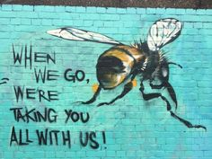 We're taking you with us. ~Bees #MrBowerbird