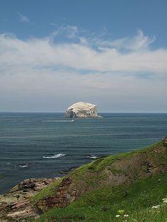 Bass Rock, Scotland. Email at info@rubicon3.co.uk. Rubicon 3 - SAIL . TRAIN . EXPLORE: Adventure Sailing www.rubicon3.co.uk