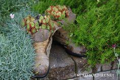 Plant a succulent boot: 9+ DIY Succulent Garden Ideas at empressofdirt.net