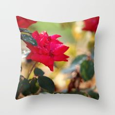 #Free Shipping on everything until midnight!  #roses,#raindrops  Throw Pillow made from 100% spun polyester poplin fabric, a stylish statement that will liven up any room. Individually cut and sewn by hand, each pillow features a double-sided print and is finished with a concealed zipper for ease of care.  Sold with or without faux down pillow insert.