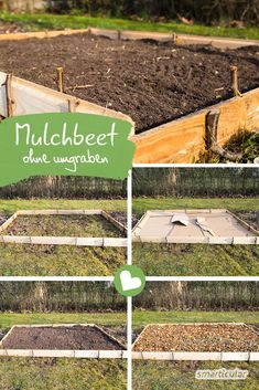 Rasen in Beete verwandeln Turning a lawn or meadow into a fertile bed doesn't have to be hard work. With these instructions you save yourself digging and let nature work for you. Ideas Hogar, Fence Landscaping, Garden Care, Plantation, Diy Garden Decor, Back Gardens, Lawn Care, Lawn And Garden, Amazing Gardens