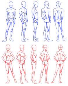 12 realistic woman body shape chart by NinaSquirrelly on deviantART