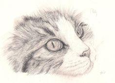 Look at Me: Pencil by Emasone on DeviantArt