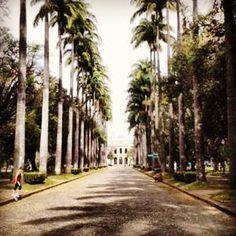 O melhor da vizinhança Belo Horizonte, MG