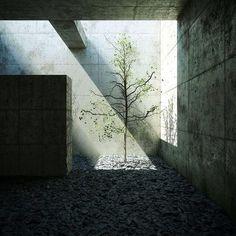 Promenade architecture - by Tadao Ando (1941), Japanese