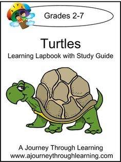 New Title: Turtles Lapbook with Study Guide. We all love turtles! These cute…