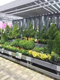 home depot garden center memorial day sale