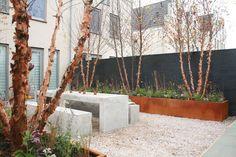 Moderne tuinen kenmerken zich door het gebruik van strakke lijnen. Moderne tuinen zijn er in talloze vormen en maten. Op zoek naar inspiratie voor jouw tuin? Op TuinTuin.nl staan duizenden foto's en blogs.