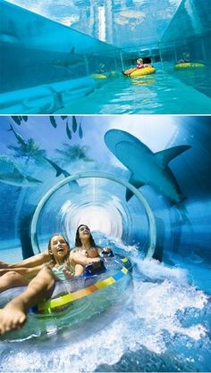 Go on a water slide sat in big inflatable ring.