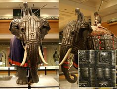 Asian elephant armor
