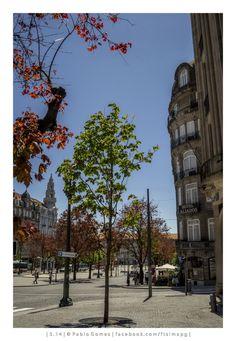 Avenida dos Aliados / Avenida de los Aliados / Avenue of the Allies [2014 - Porto / Oporto - Portugal] #fotografia #fotografias #photography #foto #fotos #photo #photos #local #locais #locals #cidade #cidades #ciudad #ciudades #city #cities #europa #europe #baixa #baja #downtown @Visit Portugal @ePortugal @WeBook Porto @OPORTO COOL @Oporto Lobers