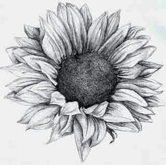 brushstrokes, etc.: Sunflower tattoo Thinking.about doing a sunflower tattoo as a cover. Boys With Tattoos, Love Tattoos, Beautiful Tattoos, Tatoos, Sunflower Drawing, Sunflower Tattoos, Sunflower Mandala Tattoo, Watercolor Sunflower Tattoo, Sunflower Sketches