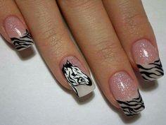 An actual zebra