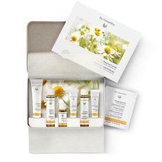 Set Facial Purificante (pieles grasas) 7 productos Dr Hauschka