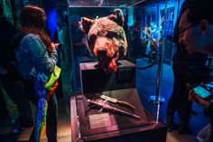 SXSW: 'Game of Thrones' Exhibition - 10 of 26 - Photos - The Austin Chronicle