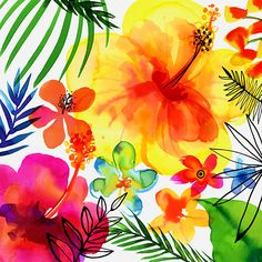 Watercolor & Ink: Margaret Berg Art: Jungle Tropics Yellow Hibiscus