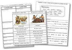 La préhistoire – Traces écrites et évaluation CE2 | la maîtresse a des yeux dans le dos