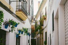 Streets in Cordoba #cordoba #andalusia #alandalus #espana #spain ingephotography.nl