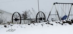 In the snow by annkagarise on Etsy, $12.00