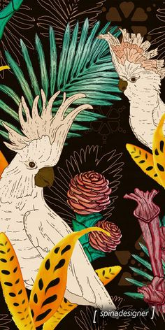 Walter Spina | Tropical Cockatoos #print #pattern #illustration #art #estampa #digitalpainting