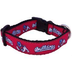 73144e32466151 High Maintenance Dog NCAA Fresno State Bulldogs Dog Collar, Medium Fresno  State, Team Gear