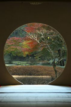Meigetsuin Garden, Kamakura, Japan