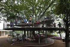 Kindergarten Centered Around a Legendary Tree - My Modern Met