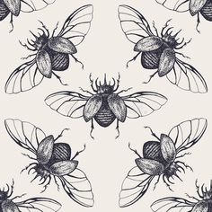 Beetles with wings vintage seamless pattern. Vintage h , drawings vintage Beetles With Wings Vintage Seamless Pattern Stock Vector - Illustration of element, hipster: 59708495 Bugs Drawing, Beetle Drawing, Tattoo Studio, Bug Tattoo, Insect Art, Bugs And Insects, Vintage Patterns, Art Drawings, Tattoo Drawings