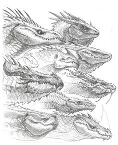 One night I was doodling up a bunch of dragon heads, just to brainstorm.
