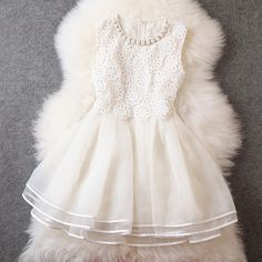 Gorgeous Embroidered Lace Dress