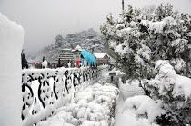 Shimla is the most famous Indian Honeymoon Destination in Himachal Pradesh,It greets the newly married couples with pleasant environment, hills covered with greenery and mountain peaks capped with snow, which will make your honeymoon a lifetime occasion to remember. The Kalka Shimla Train Journey offers a romantic experience to the honeymoon couples who are coming here to understand each other on the backdrop of beautiful nature.