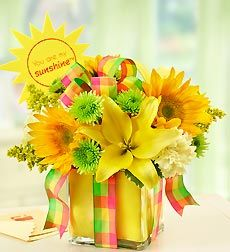 All Wrapped Up - Yellow - All Wrapped Up - Yellow with Pick. EXCLUSIVE Let the sun shine in. Send a gift that brings instant smiles to their day with our radiant arrangement of brilliant yellow lilies, carnations and sunflowers. Gathered by hand in a chic cube vase, it's finished with a vibrant plaid ribbon and yellow foam liner, to deliver a smile that's wrapped and ready. The freshest yellow lilies, sunflowers and carnations, gathered with green poms, bright solidago and variegated…