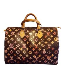 7cbf975cd338 Sacs à main Louis Vuitton SPEEDY Toile Multicolore,Autre ref.103120 - Joli  Closet