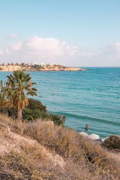 All you need to know before booking your holiday in Coral Bay, Cyprus - recommendations for best beaches, restaurants and attractions from a local. Kato Paphos, Crown Resorts, Nissi Beach, Travel Around The World, Around The Worlds, Limassol Cyprus, Holiday Resort, Picnic Area, Best Places To Travel