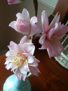 Sugar Cherry blossoms - by La lavande Cake Boutique @ CakesDecor.com - cake decorating website