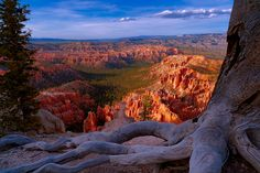 Bryce canyon overlook by Giovanni Allievi