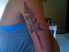 Beautiful redwood tattoo on the leg though
