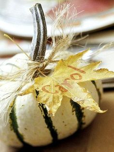 Great idea for place card settings. Write name on leaf and tie with raffia on mini pumpkin.