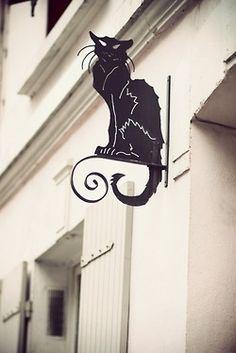 le chat Noir                                                                                                                                                                                 More