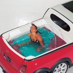 Mini'den de olsa olsa havuz olur, insanda akil olsa sunu almaz .)