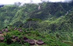 Hiking in the mountain of Papau New Guinea