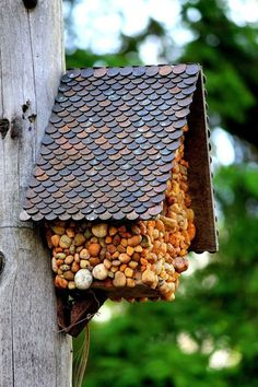 A DIY birdhouse with a roof made of pennies. Penny Decor, Gnome House, Diy Birdhouse, Birdhouse Decorating Ideas, Birdhouse Designs, Unique Birdhouses, Bird Houses Diy, Fairy Houses, Pennies