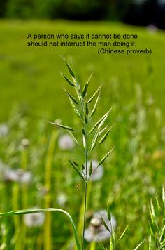 A person who says it cannot be done should not interrupt the man doing it ~ Chinese proverb http://leadershipbyvirtue.blogspot.com/2013/10/leadership-by-virtue-background.html