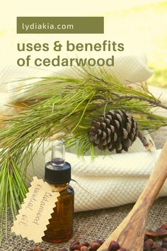 Cedarwood is a relatively common kind of soft wood that has sooo many uses! It, of course, comes from the cedar tree; and today we're gonna get into some of the ways you can benefit from it! Keep reading to find out what to do with cedar wood… Cedarwood Oil, Cedarwood Essential Oil, Holistic Remedies, Herbal Remedies, Wellness Mama, Health And Wellness, Cedar Essential Oil, Essential Oils For Stress, Natural Disinfectant
