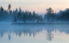 Foggy Sunset in Lapland