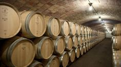 In the very depths of the Castillo Perelada cellars, surrounded by barrels and under a stone vault, Delfí Sanahuja gives a run-through of her working… People, How To Make, Wine Cellars, Wine, Folk
