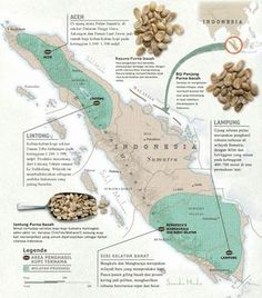 Sumatra: Citarasa Klasik Kopi Indonesia?