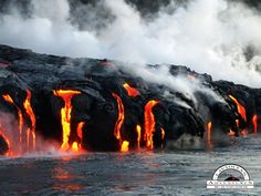 Lava Ocean Adventures offers you the finestBig Island boat tours & Activities in East Hawaii,we're your source for the best Hilo tour activities.
